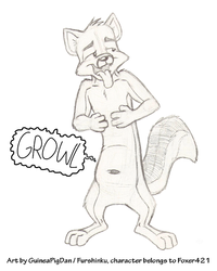 Foxer's rumbling tummy