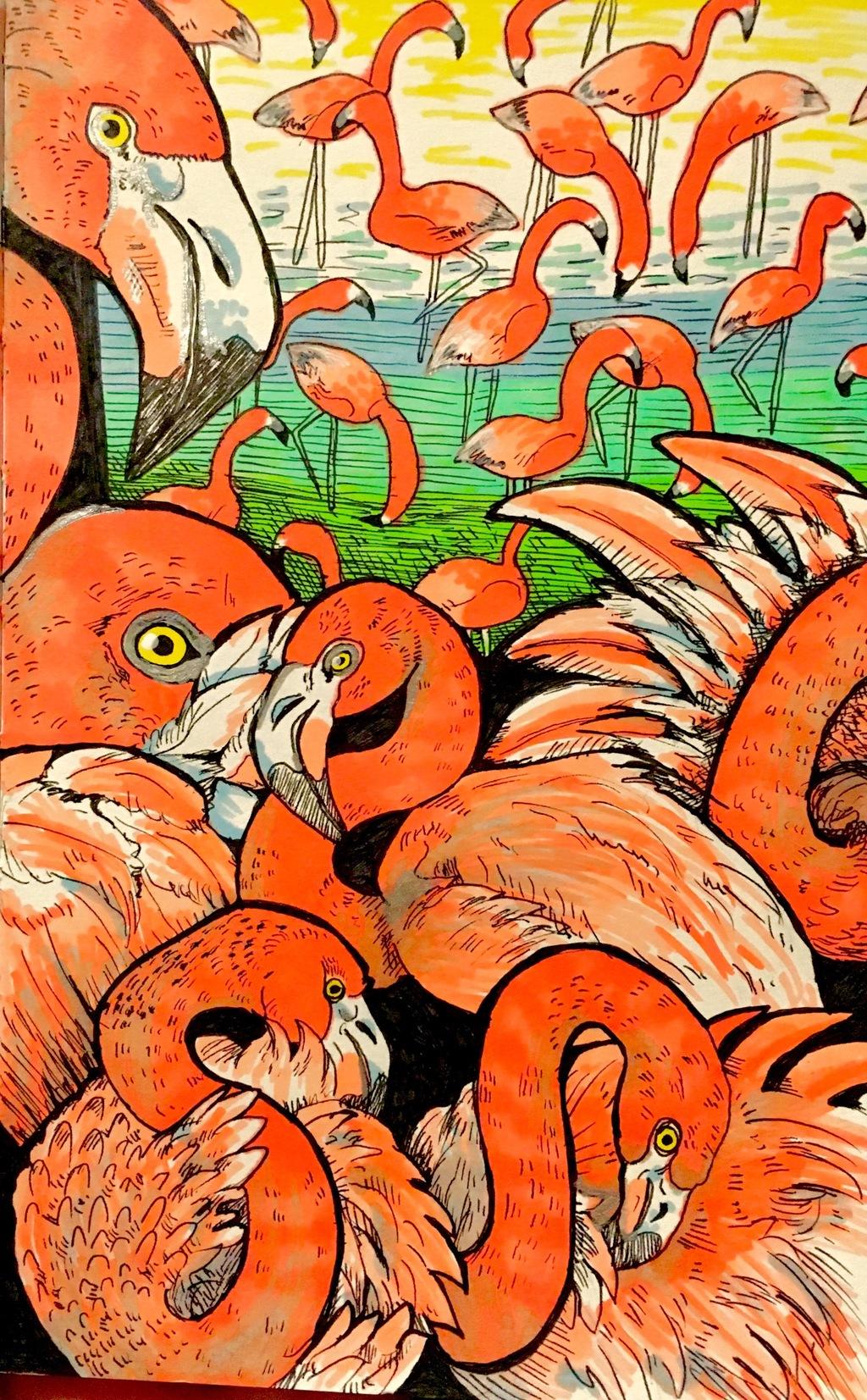 Flamingo Sketch Page
