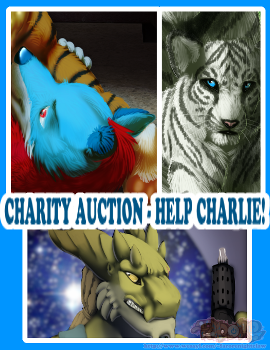 Charity Auction - Charlie's Hurt Knee (HELP A DOG!)