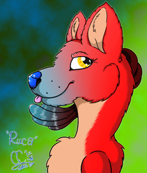 Ruca: The Lucario Wolf