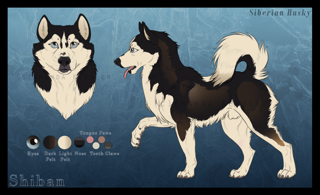 Shiban Reference   Commission