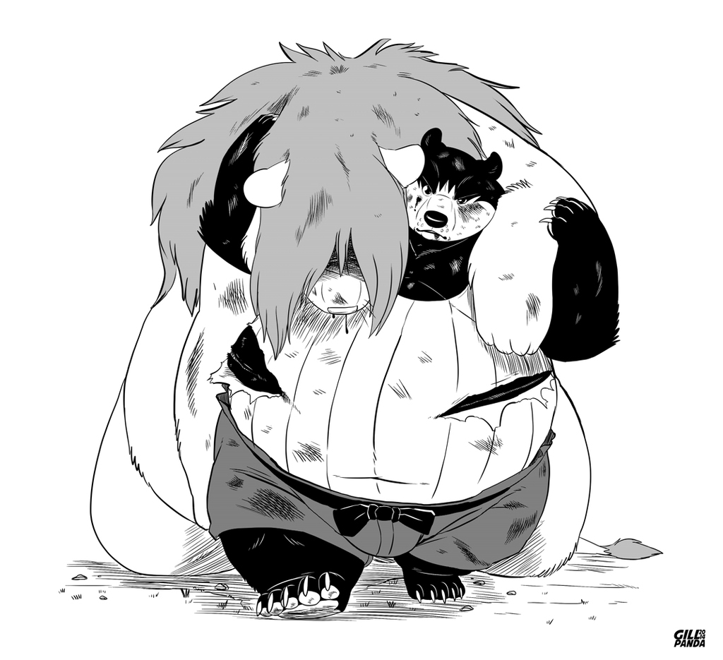 A helping Paw