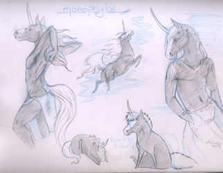 Monophylos - Sketch page