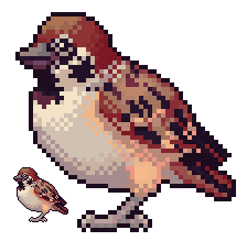 Most recent image: sparrow icon