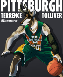 FBA 2013 Draft Picks - Terrence Tolliver (#8)