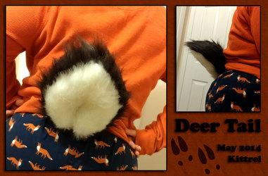 Deer Tail