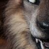 avatar of Wyoon