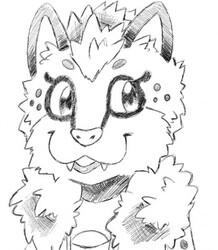 Roxy doodle