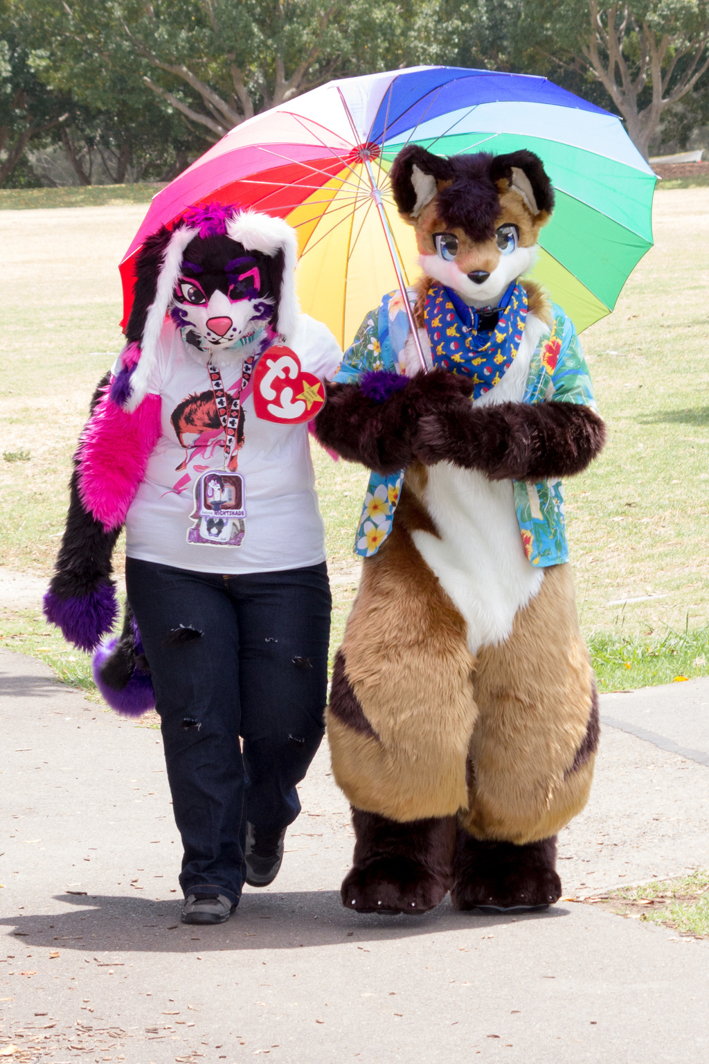 DecemFUR: Friends Walking in the Park