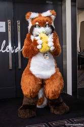 FurDU 2018: The Red Panda's Snack