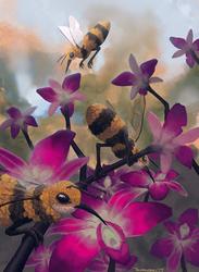 Hummingbees