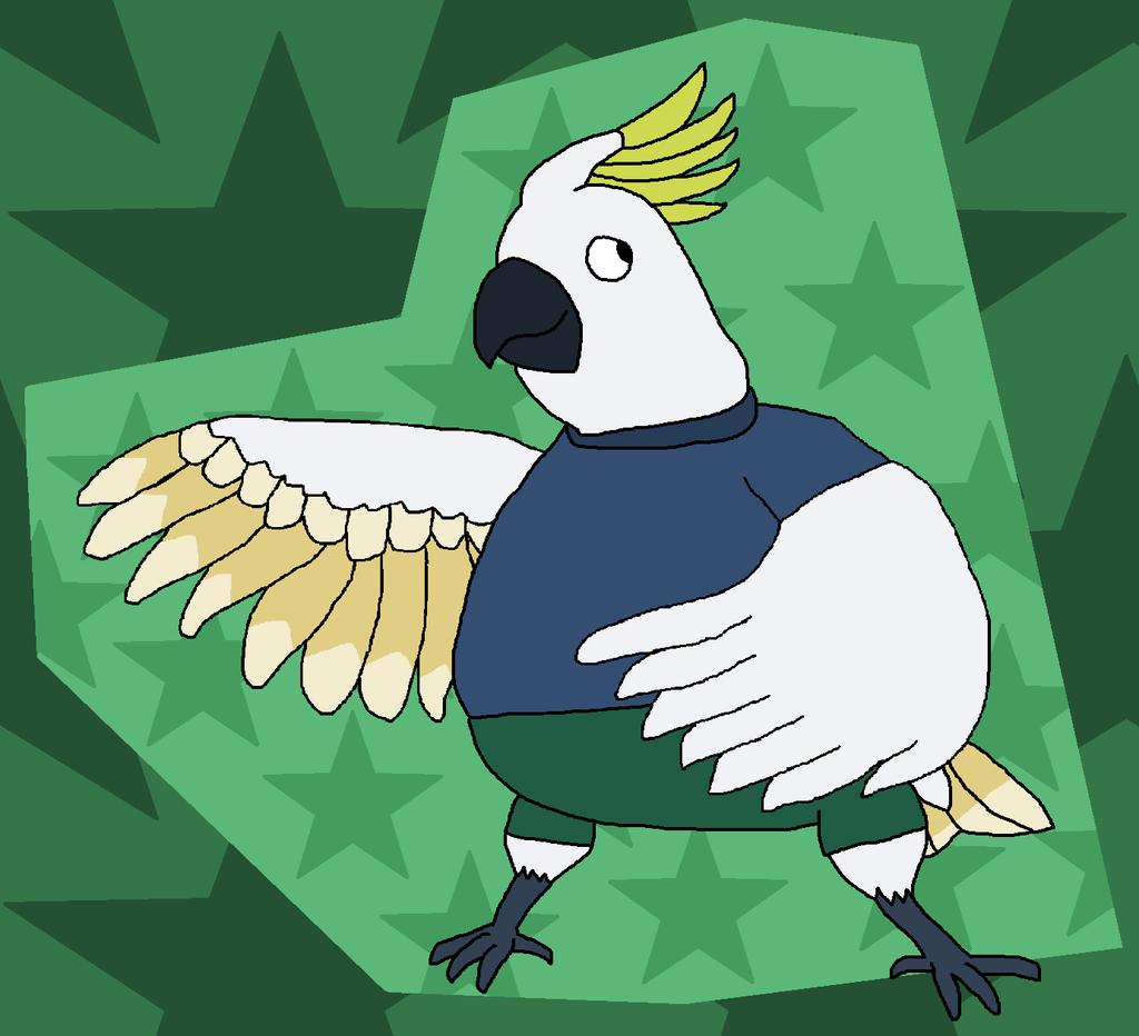 Calvin the Cockatoo