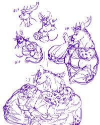 Deer doodles