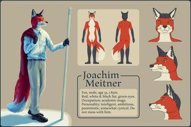 Joachim Meitner