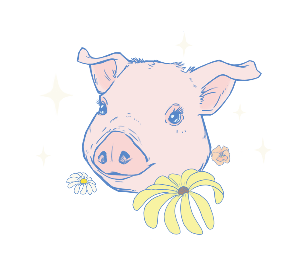 pastel pig