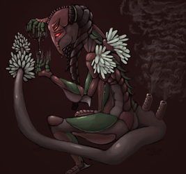 Cerillae character update! -a puzzling display-