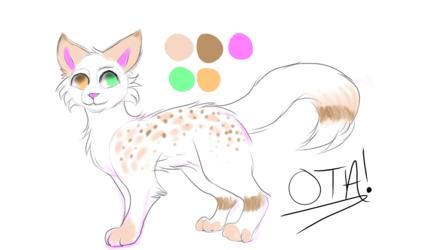 OTA- Ocicat Mix!