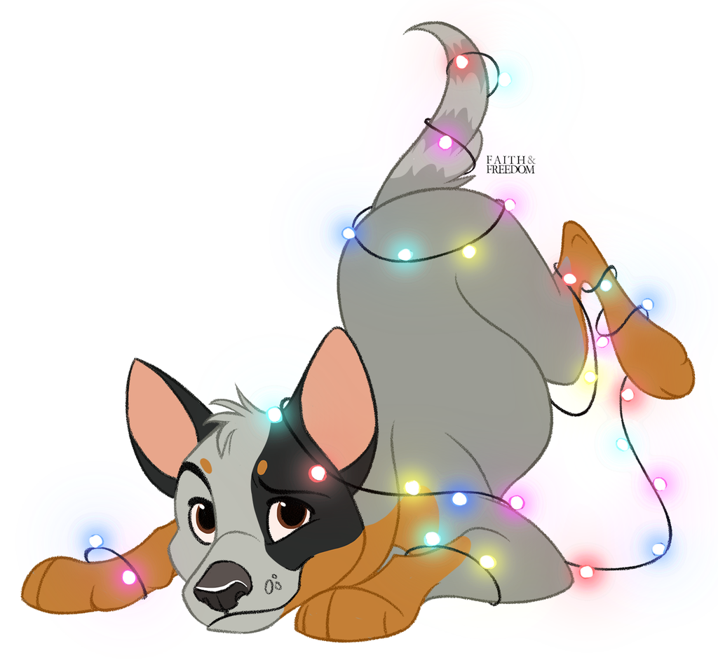 Most recent image: Poochember DAY 14 -  Australian Cattle Dog