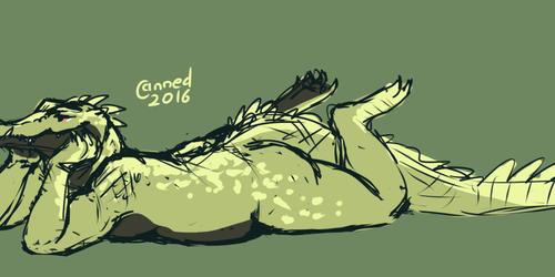croc things