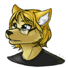 avatar of digitalfox