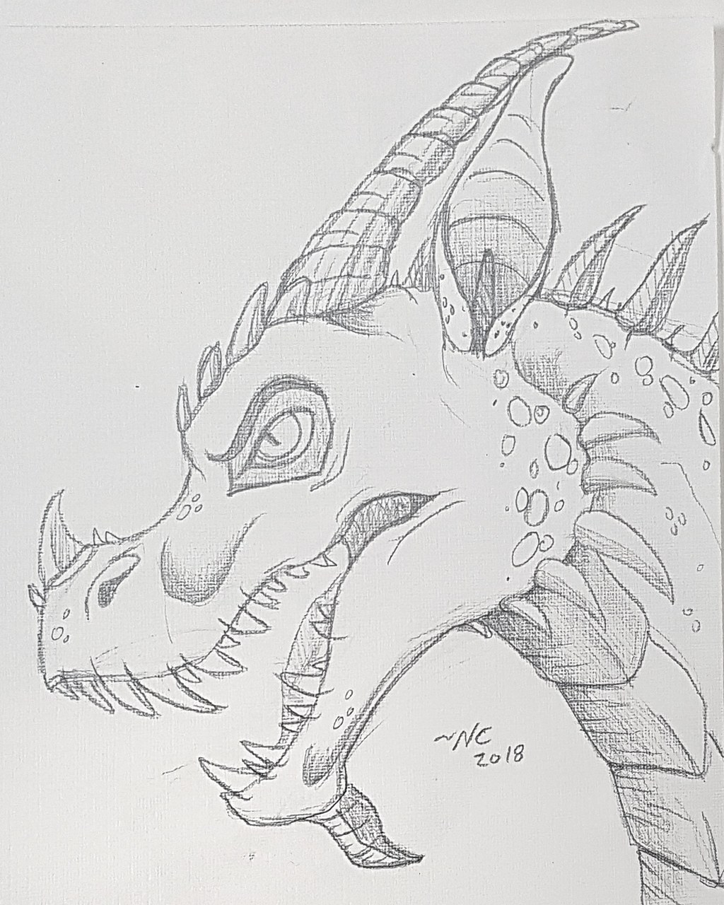 Most recent image: Dragon doodle