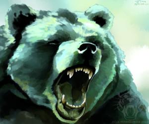 Bear Study 119