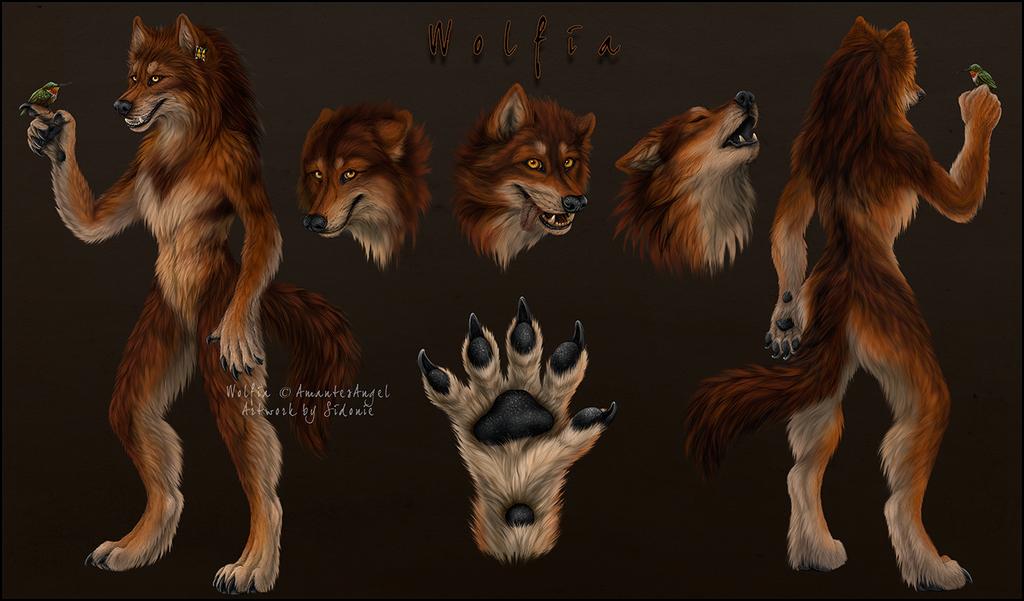 Wolfia Reference Sheet