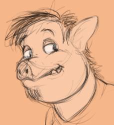 Piggy guys!