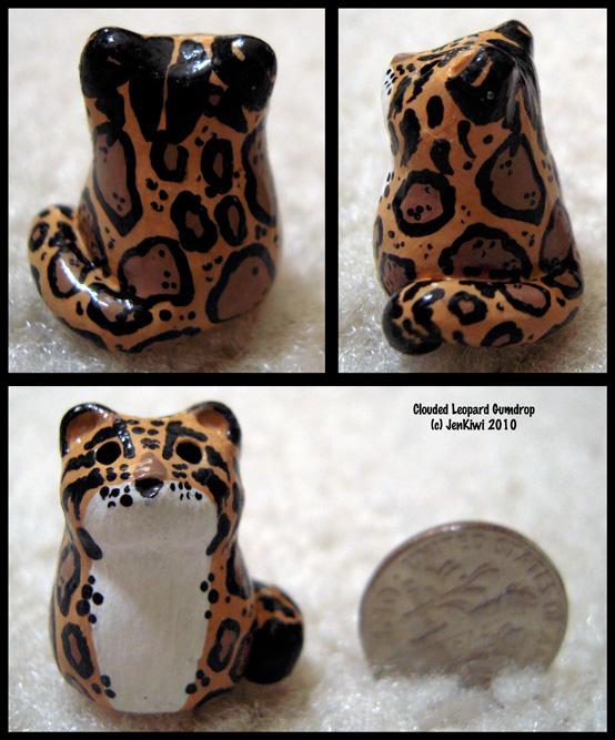 Gumdrop Clouded Leopard