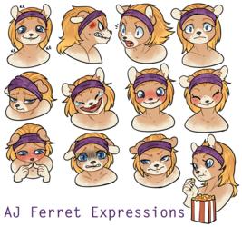 AJ Ferret Expression Chart