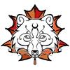 avatar of ARCR-CRic