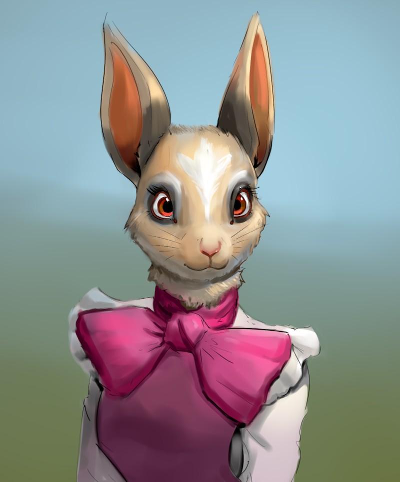 Most recent image: Bunny Portrait