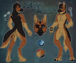 Leon Schäfer Reference Sheet