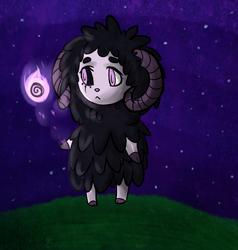 Just a sheep