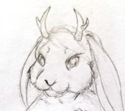 Cabbit Sketch