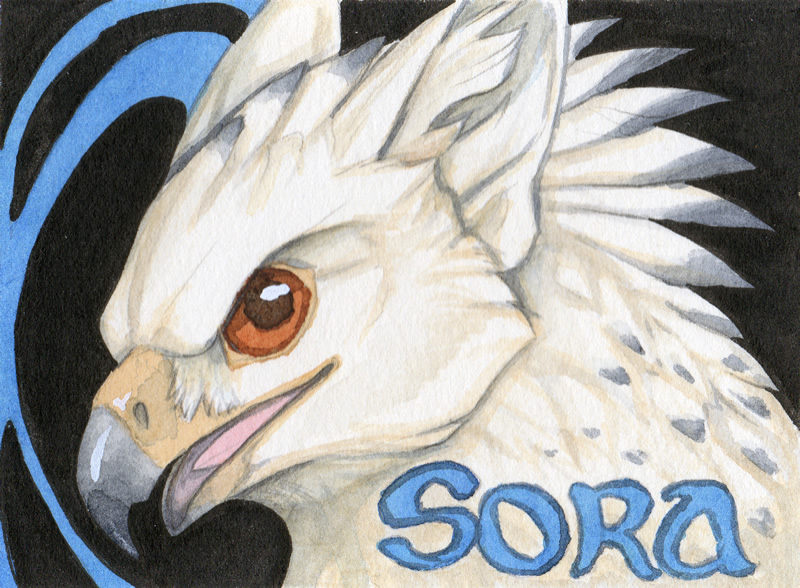 Sora Conbadge #3 by Eski