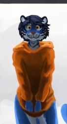 Stoopid Tiger