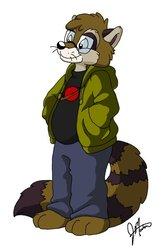 Roswell Raccoon