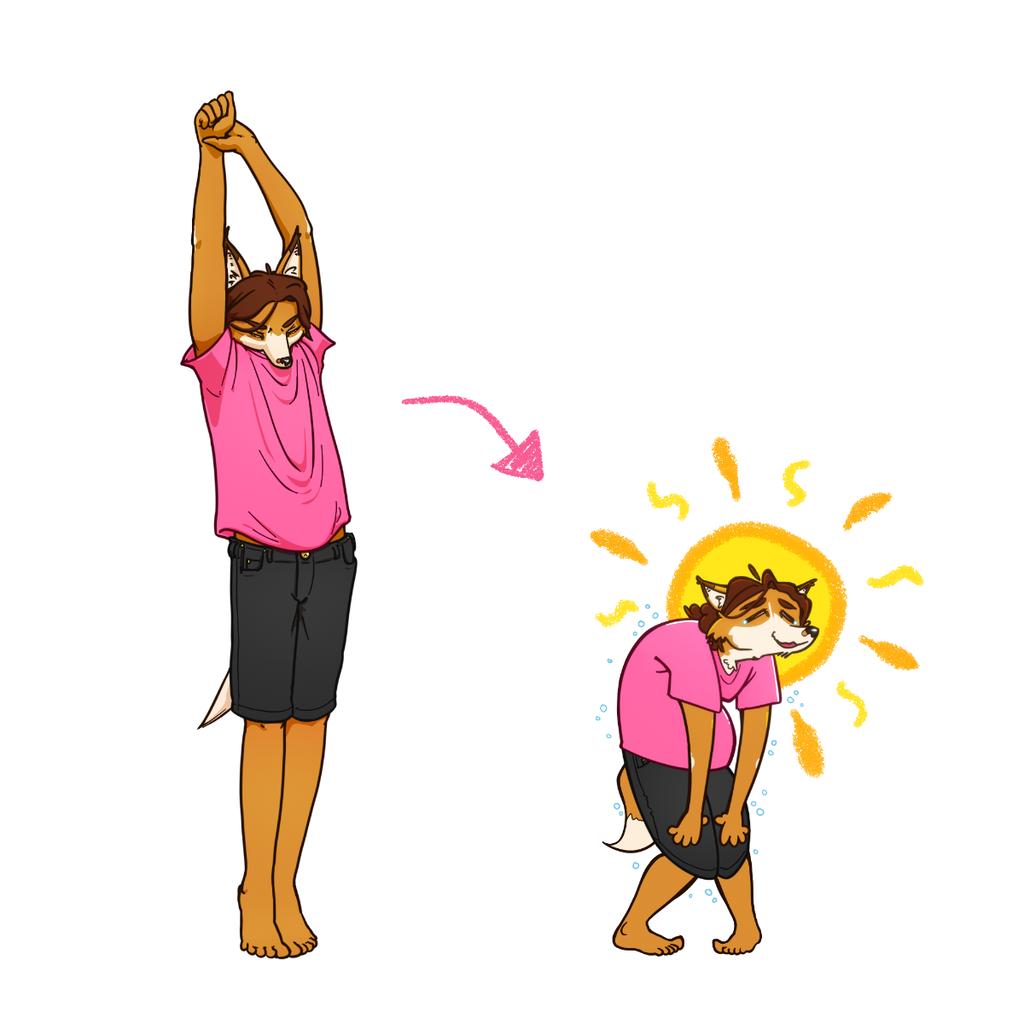 Biiiiig Stretch