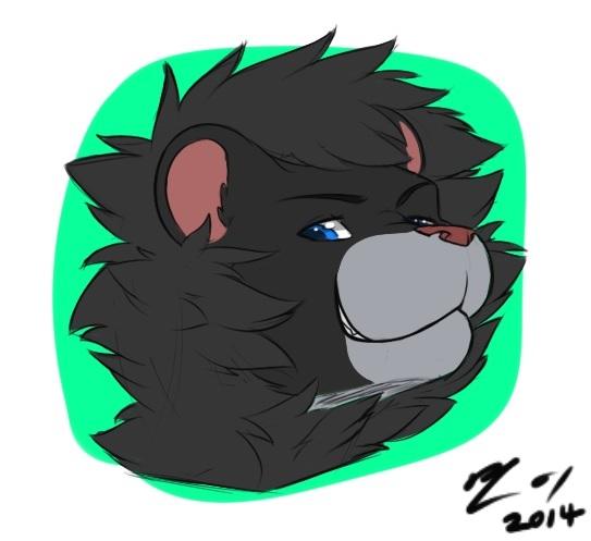 Rawr, i´m a Lion