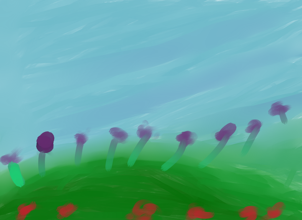 Most recent image: Flower Fields