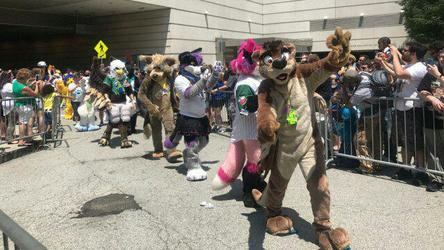 Otter in the AC Parade