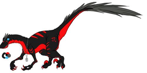 JC Raptor