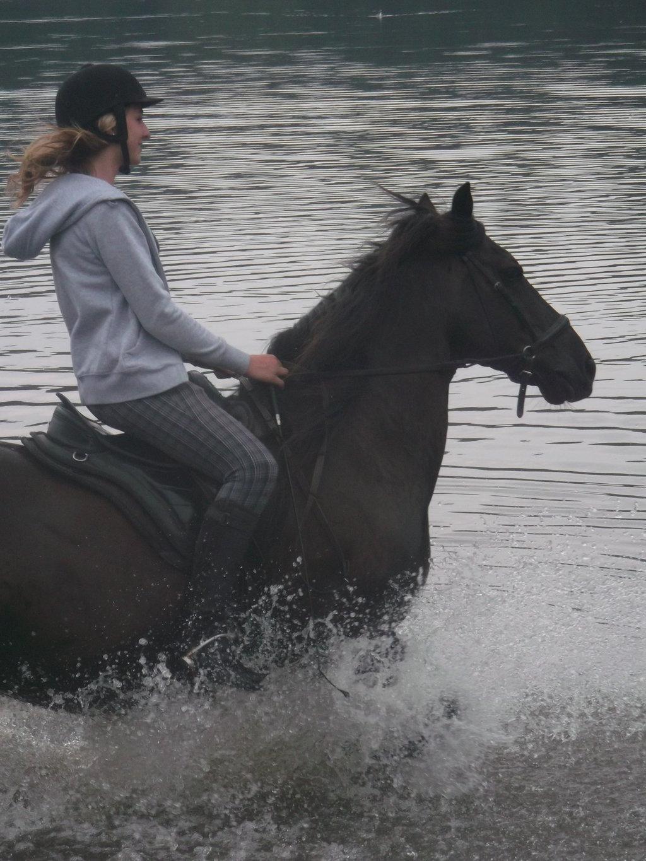 Horsey bathtime! - I