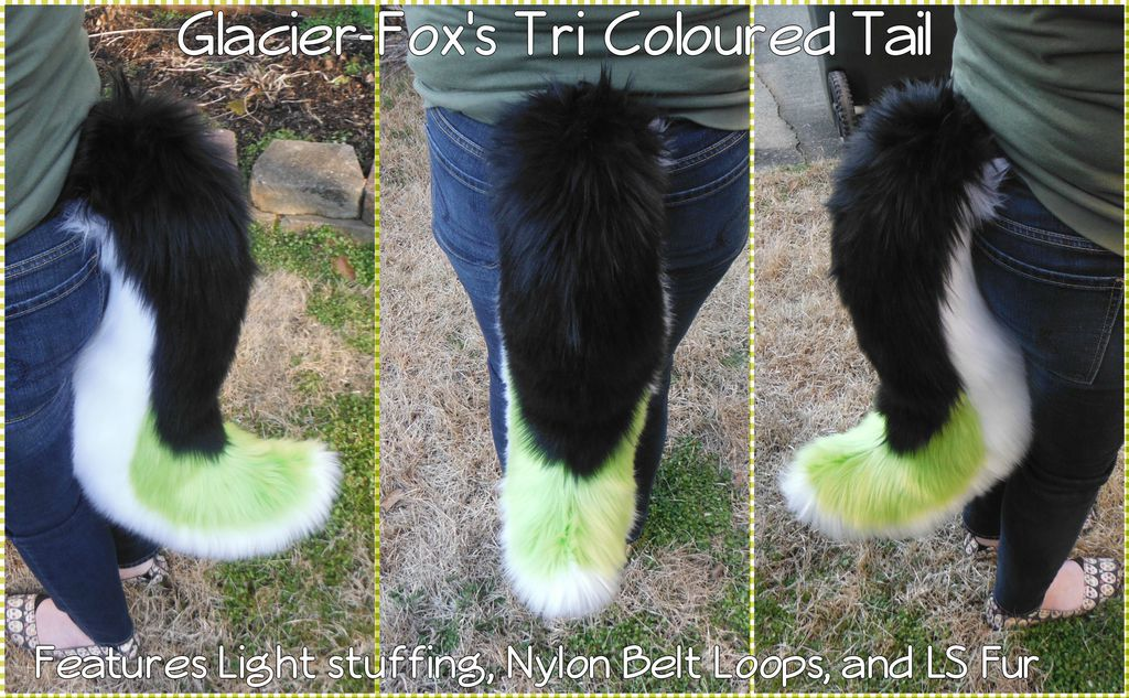 [C] Glacier-Fox's TriColoured Tail Commission