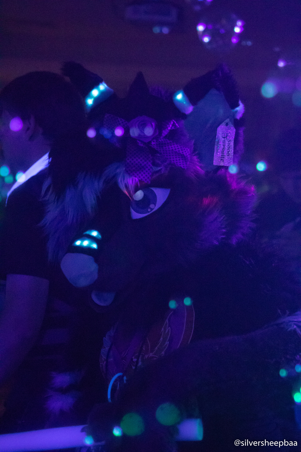 Most recent image: NeonFur 2018: Roxanne 1