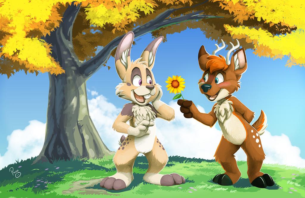 Rabbit's birthday