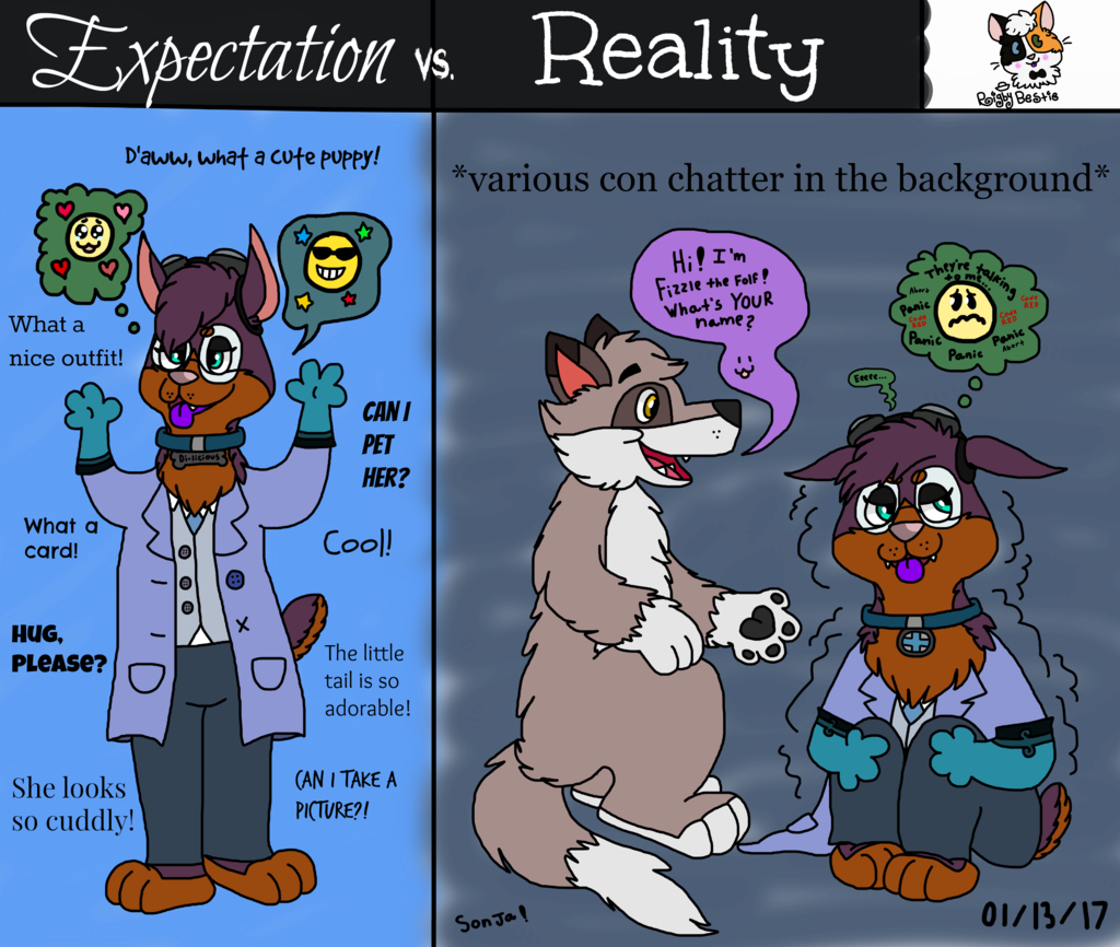 Expectation vs. Reality (Fursuit Edition)