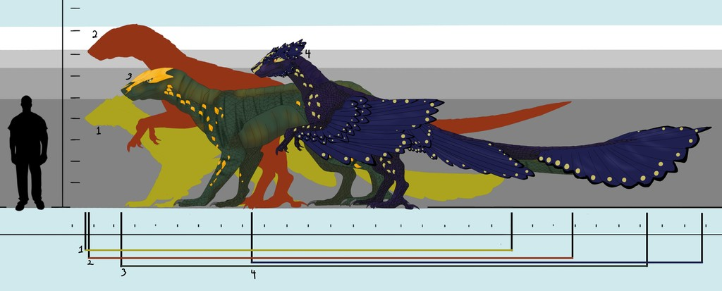 New feathered drake size chart