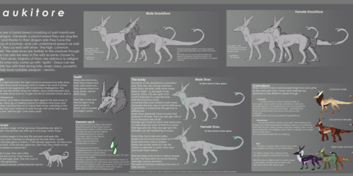 Draukitore species sheet
